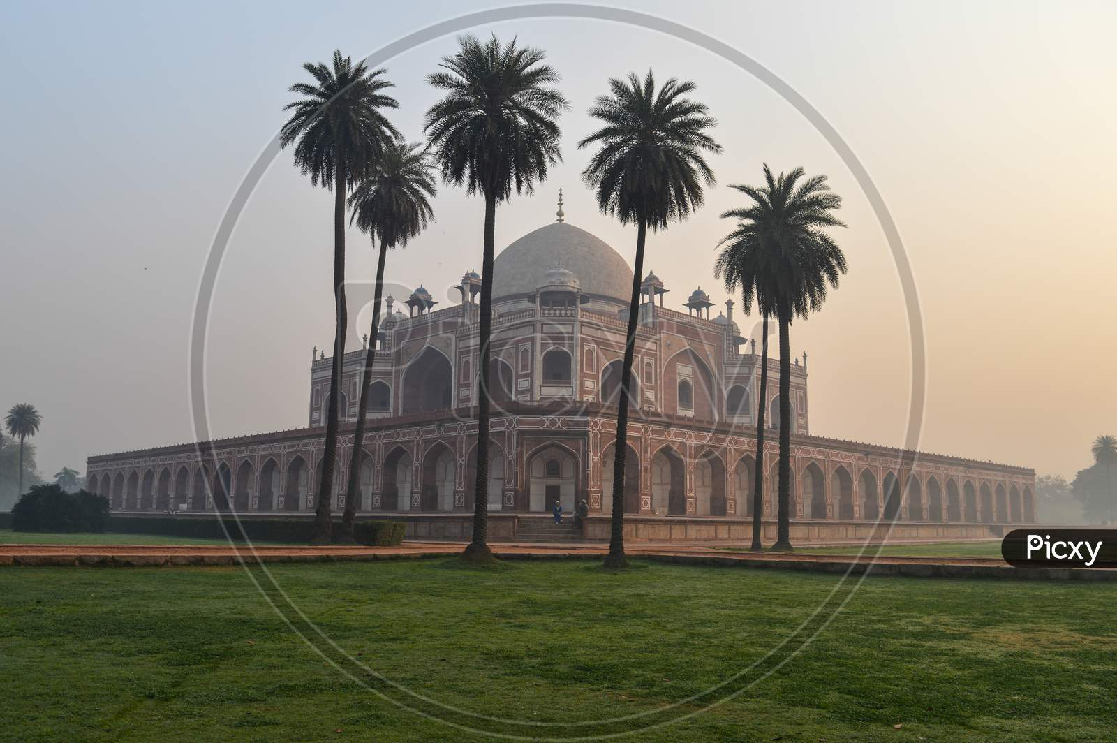 Bunch Of Palm Trees And Mesmerizing View Of Humayun Tomb Memorial From The Side Of The Lawn At Winter Foggy Morning.