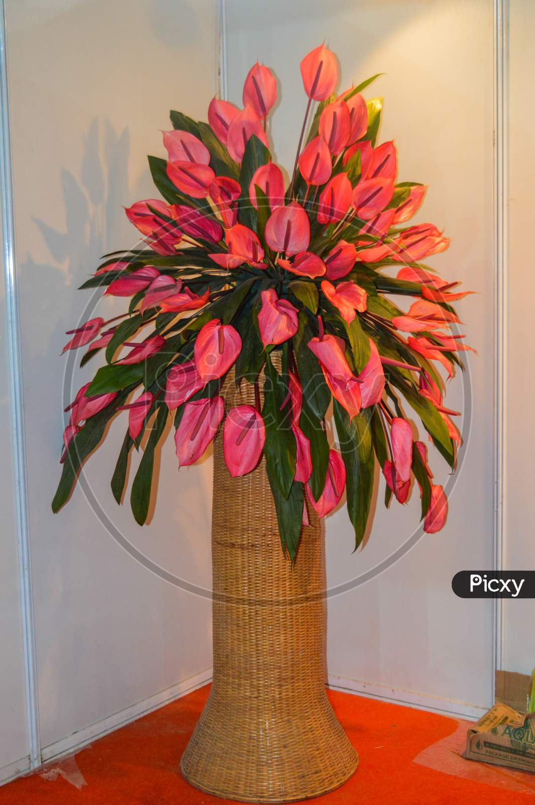 A Bunch Of Pink Flower Into Pot Made Out Of Wooden.