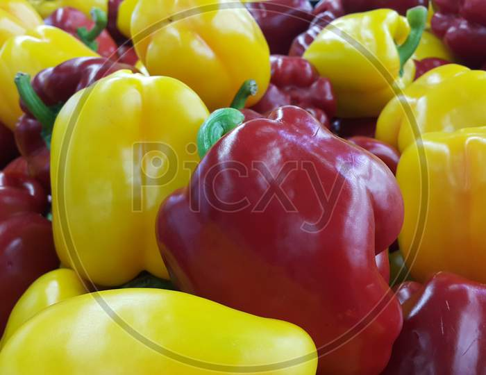 Several Colorful Green, Yellow, Red, Purple Hot Shiny Shimla Chilli Or Peppers