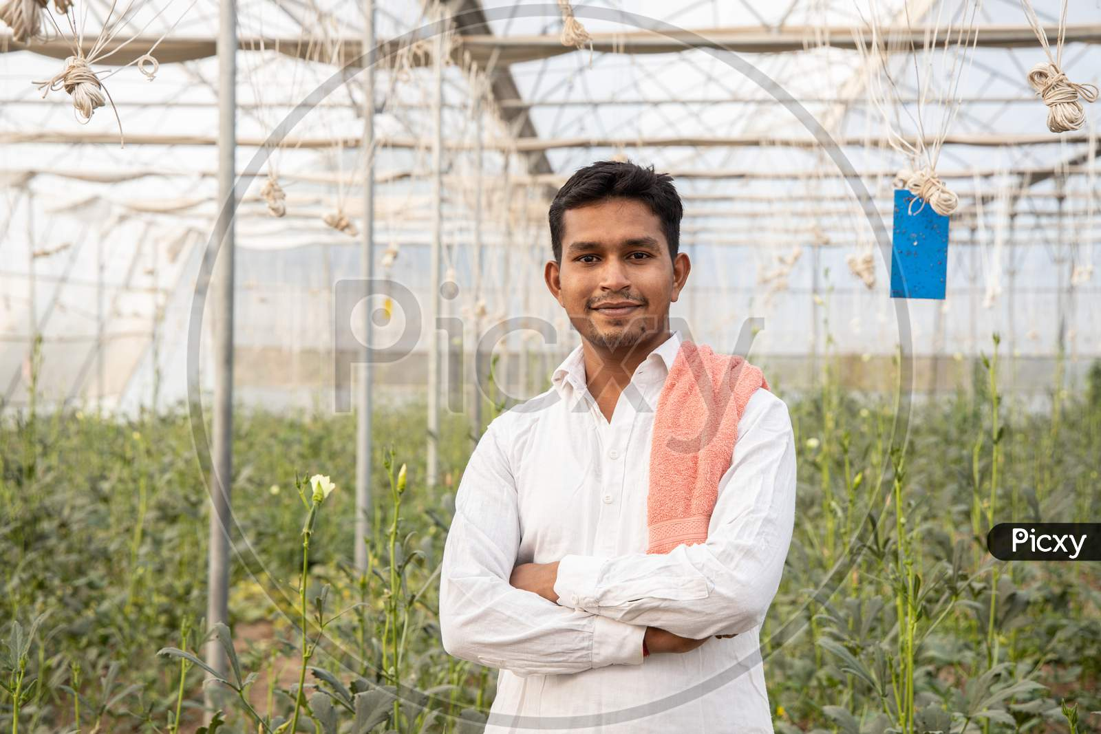 Portrait Of Young Happy Indian Farmer Standing Cross Arms At His Poly House Or Greenhouse, Agriculture Business And Rural Prosperity Concept. Man Wearing White Cloths, Copy Space