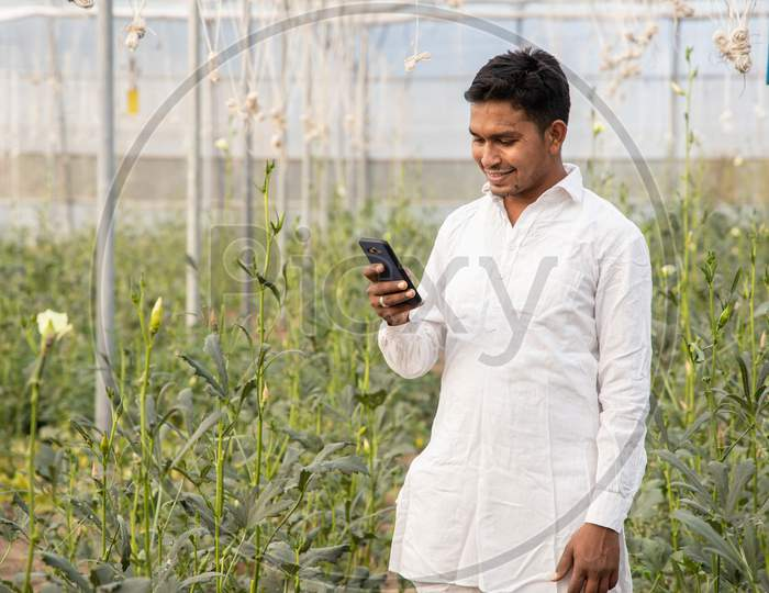 Young Indian Modern Farmer Using Smart Mobile Phone At Poly House Or Greenhouse Field, Agriculture And Technology Concept Copy Space,