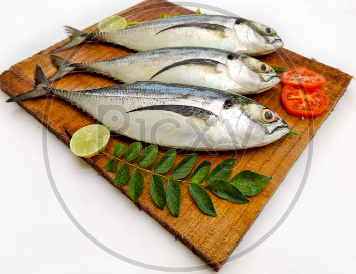 Fresh Finletted Mackerel Fish (Torpedo Scad) Decorated With Herbs And