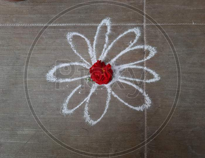 Closeup Of Simple White Color Rangoli Drawing On Concrete Floor And Decorated Center With Flower Red Rose