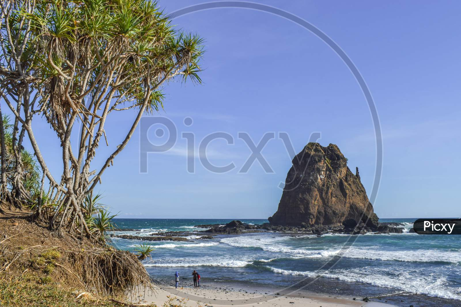 Beautiful beach view with cool trees
