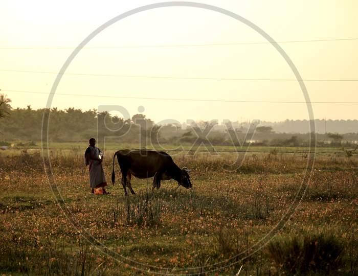 Indian Farmer.