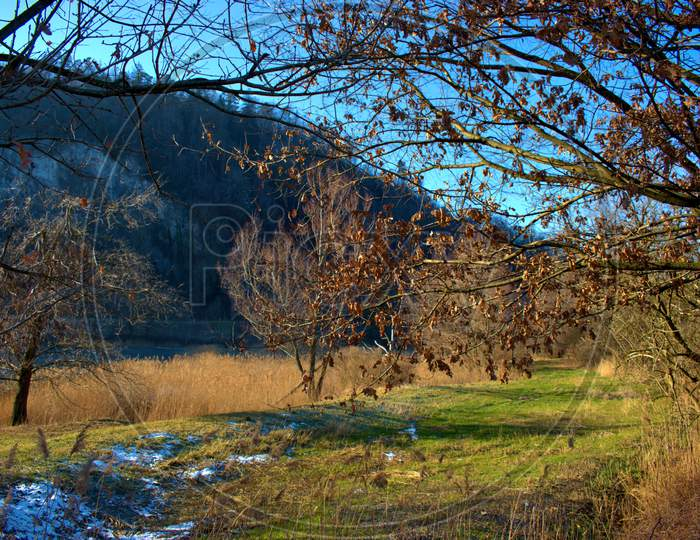 Heavenly Landscape In Oberriet In Switzerland 11.1.2021