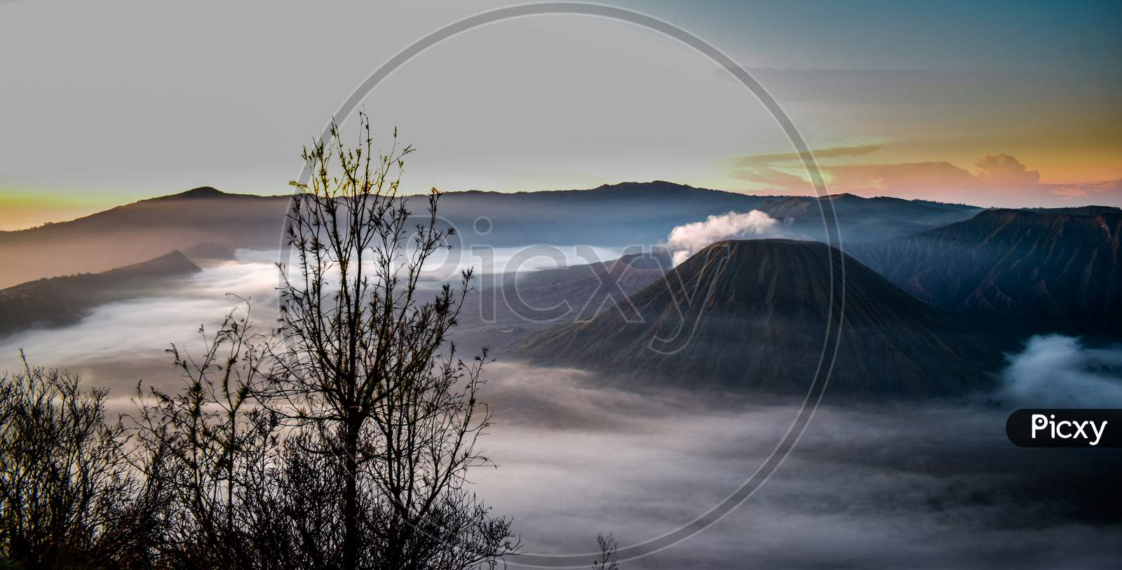 Mount Bromo is naturally misty and dusty which is very beautiful with an old tree as the foreground,Nature bromo volcano