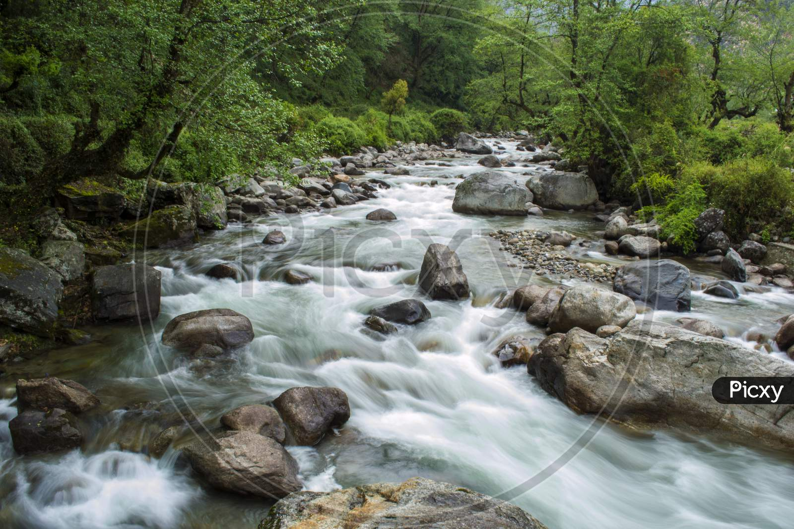 A Beautiful Mountain River Balkhila Flowing Through Rocks And Forest In A Small Village.