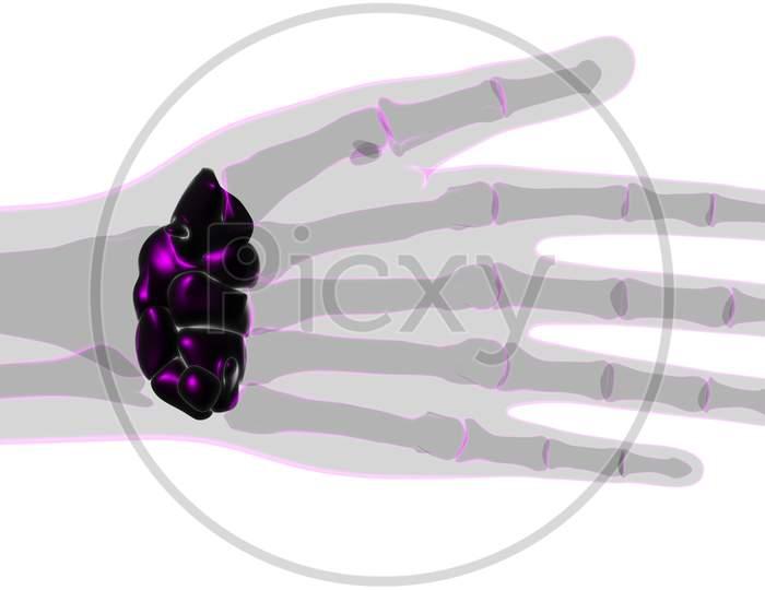 Human Skeleton Hand Wrist Carpals Bone Anatomy For Medical Concept