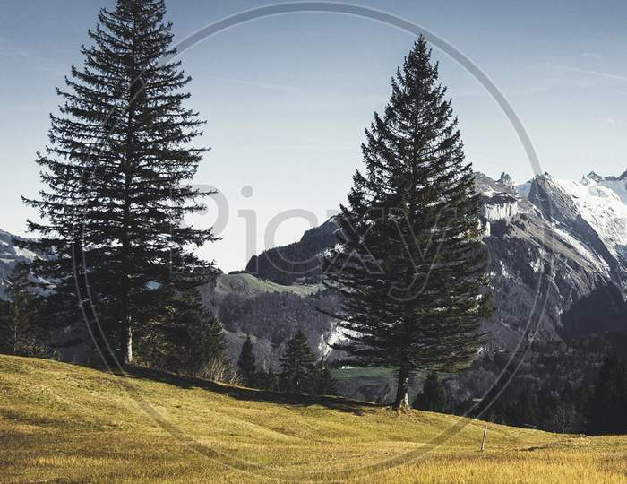 Beautiful pictures of  Appenzell.Switzerland