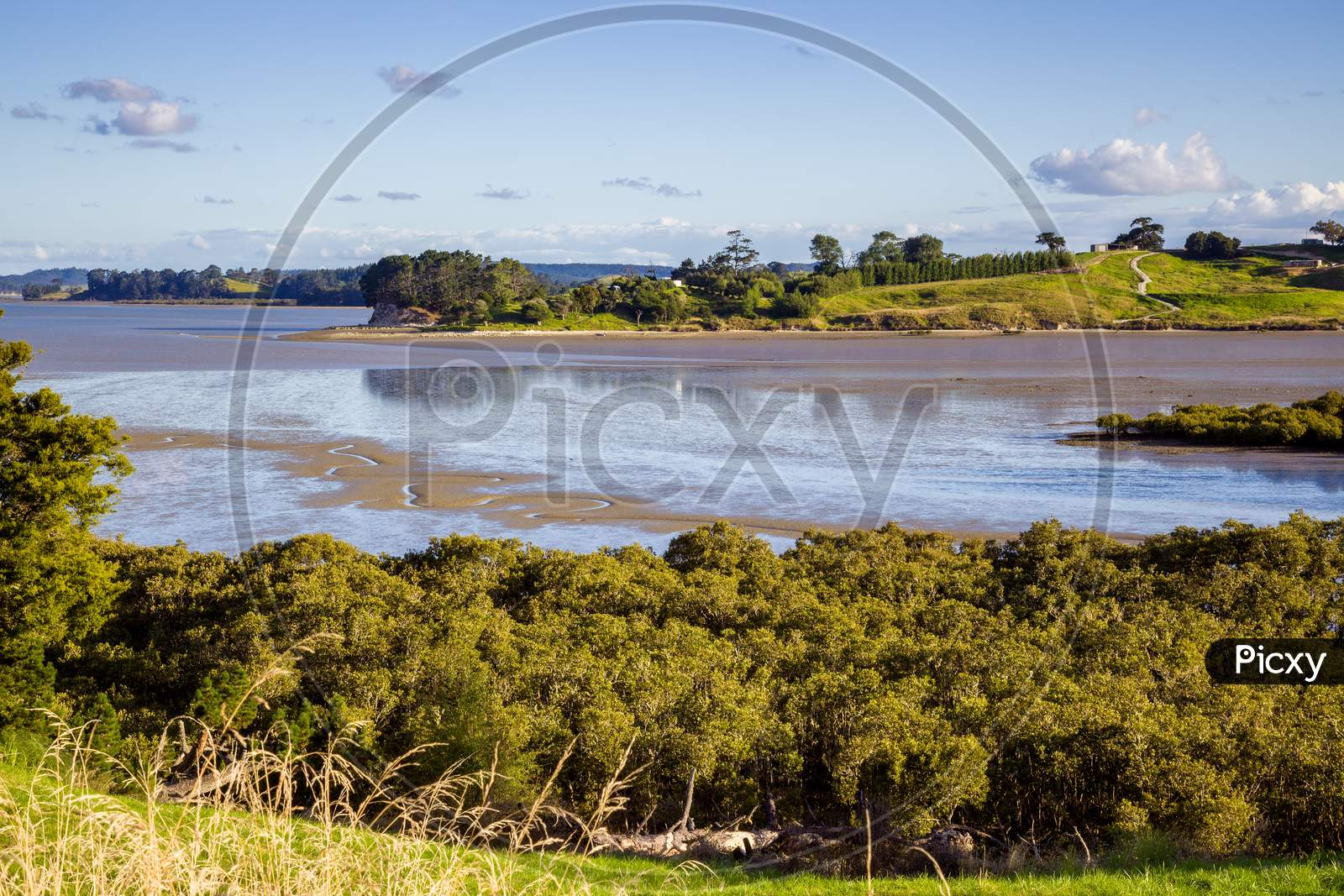 Tidal River Landscape In The North Island Of New Zealand