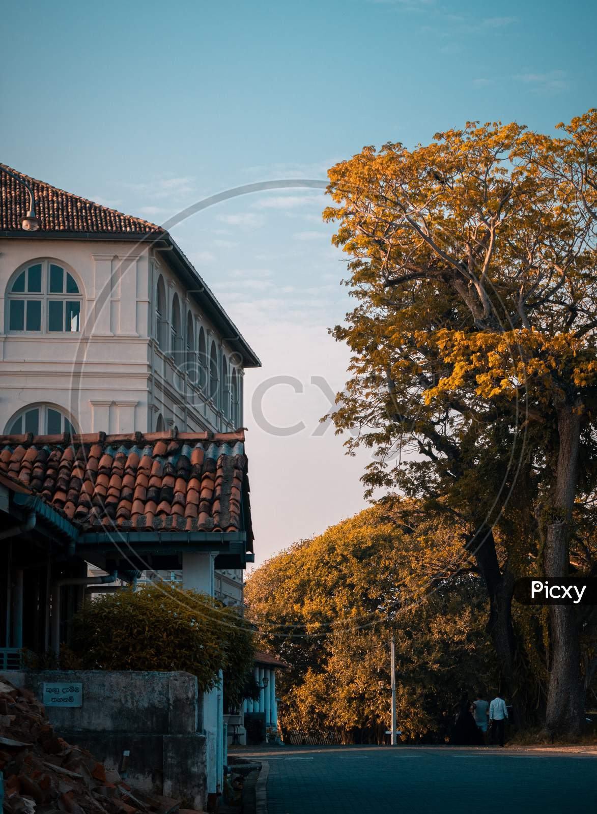 Amangalla Hotel Building And The Tall Trees And The Streets In Galle Fort Evening Landscape Photograph.