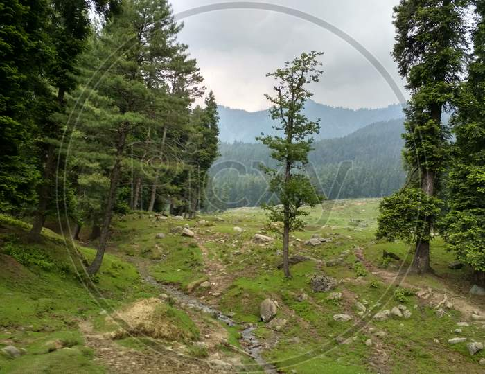 A Beautiful view and environment of deenu valley in Kashmir