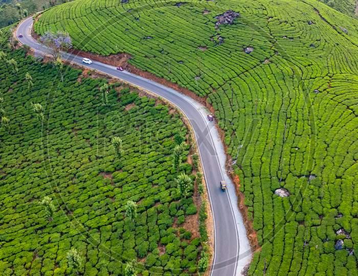 Drone Views of Tea Plantations in Munnar of Idukki District