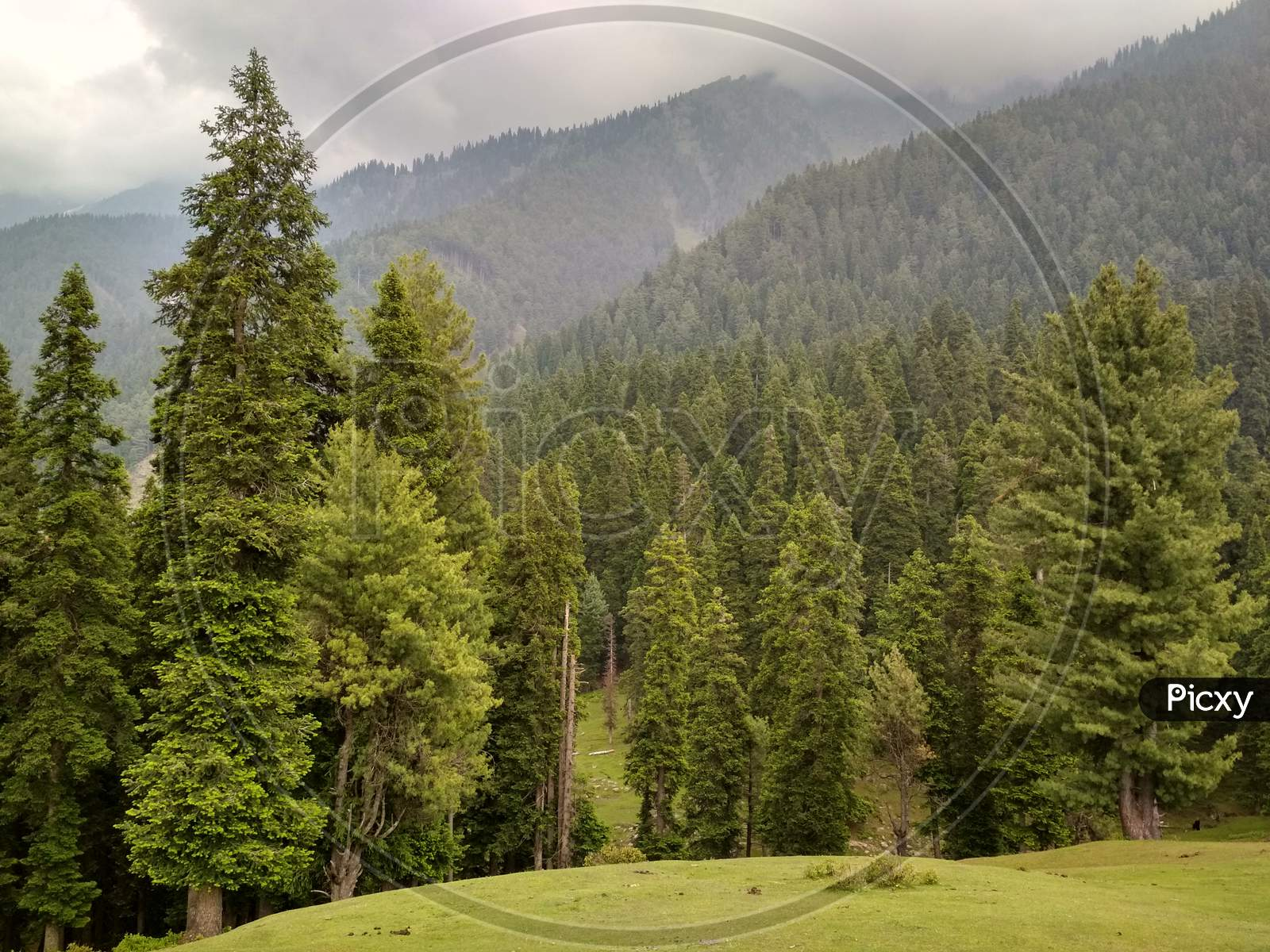 A Beautiful and peaceful view of deenu valley