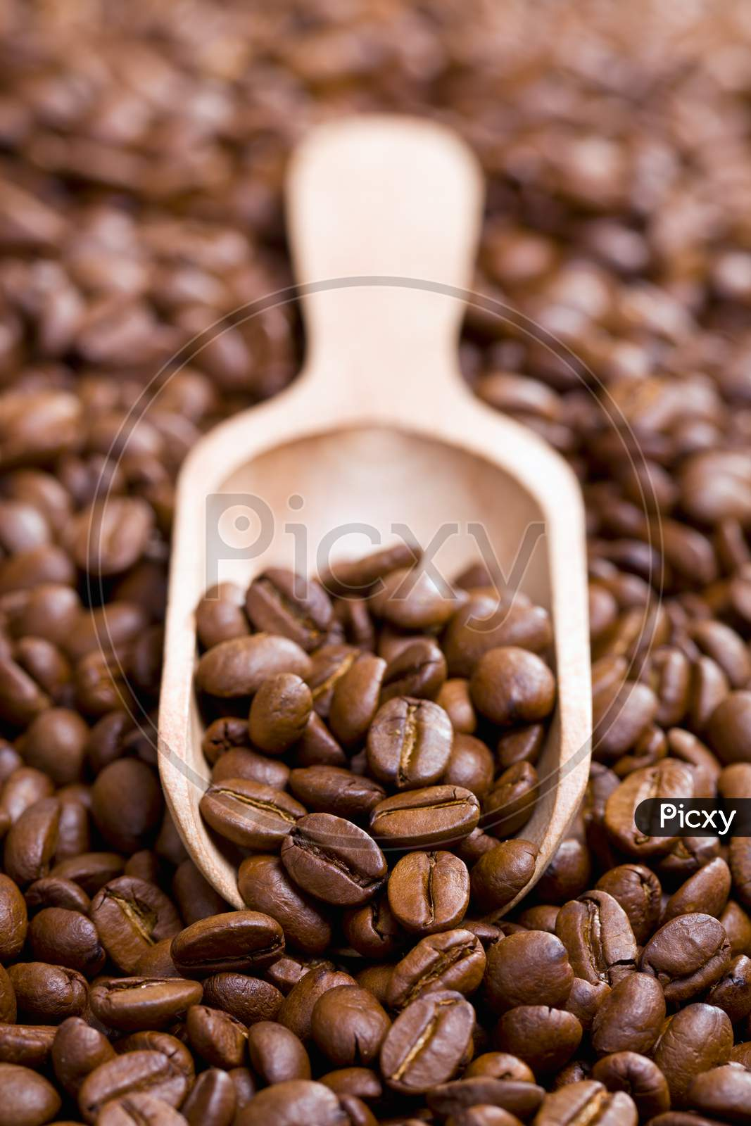 Coffee Beans On Wooden Scoop background