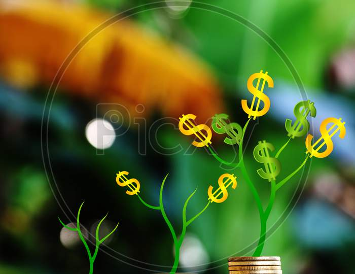 Plant Grow On Money Stacks In An Environment. Money-Saving And Sustainable Business Investment Idea