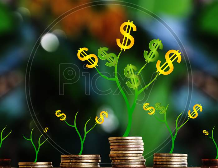 Plant Grow On Money Stacks In An Environment With This Money Saving And Sustainable Business Investment Idea